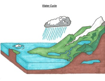 FREE - Water Cycle Poster (K-6)