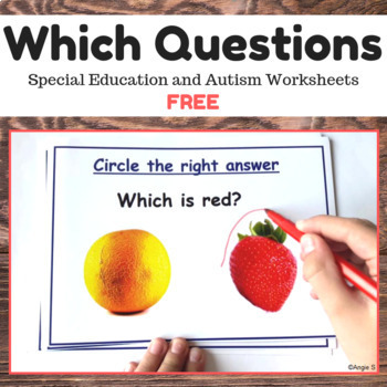 Which Questions for Special Education and Speech Therapy, Wh Questions FREE