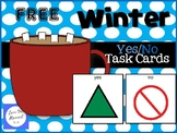 FREE Winter Yes/No Task Cards (AAC) For students with Autism
