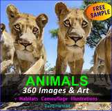 FREE - Zoo Animals