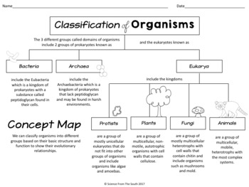 Classification of Organisms Concept Map for Review or Assessment