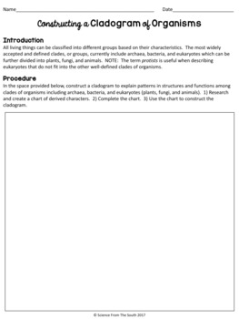Constructing a Cladogram of Organisms Activity Worksheet