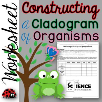 Constructing a Cladogram of Organisms Activity Worksheet