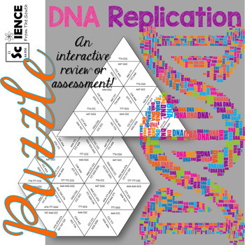 DNA Replication Puzzle for Review or Assessment of Base Pairing Rules