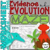 Evidence of Evolution Maze Worksheet for Review or Assessment