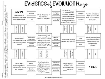 evidence of evolution maze worksheet for review or assessment tpt. Black Bedroom Furniture Sets. Home Design Ideas