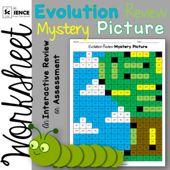 Evolution Review Mystery Picture Worksheet by Science from the South