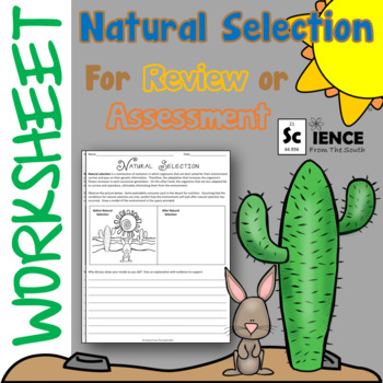 Natural Selection Worksheet for Review or Assessment