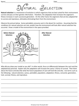 natural selection worksheet kidz activities. Black Bedroom Furniture Sets. Home Design Ideas