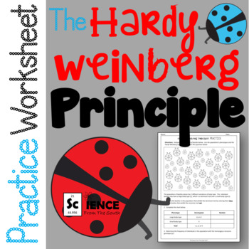 The Hardy Weinberg Principle Practice Worksheet for Review or Assessment