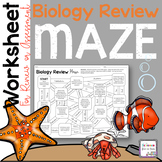 Biology Review Maze Worksheet for End of the Year Review