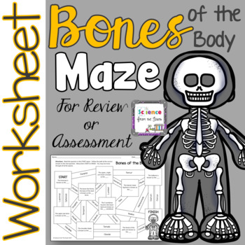 Bones of the Human Body Maze for Review or Assessment