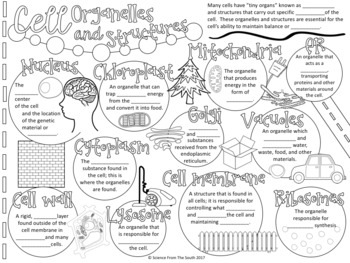 Cell Organelles and Structures Doodle Notes