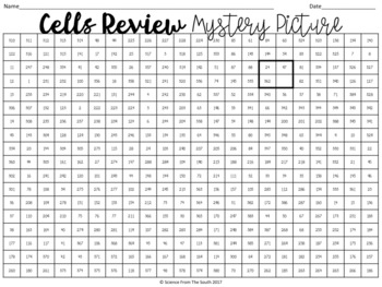 Cells Review Hidden Mystery Picture for Review or Assessment