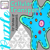Cellular Transport Puzzle for an Interactive Review or Assessment