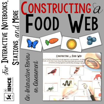 Constructing a Food Web Activity for Review or Assessment