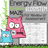 Energy Flow and Trophic Levels Maze Worksheet for Review or Assessment