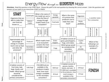 original 3296643 3 energy flow and trophic levels maze worksheet for review or assessment