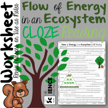 Flow of Energy in Ecosystems CLOZE Reading for Notes, Review, or Assessment