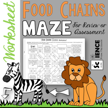 Food Chains Maze Worksheet for Review or Assessment