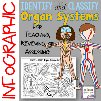 Identify and Classify Organ Systems Infographic for Review or Assessment