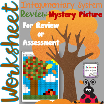 Integumentary System Review Hidden Mystery Picture with Editable Questions