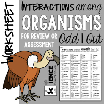 Interactions among Organisms Odd 1 Out Worksheet for Review or Assessment