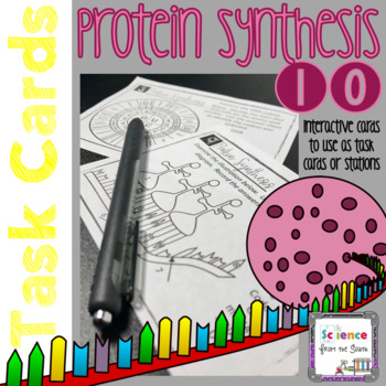 Protein Synthesis Task Cards for Review or Assessment