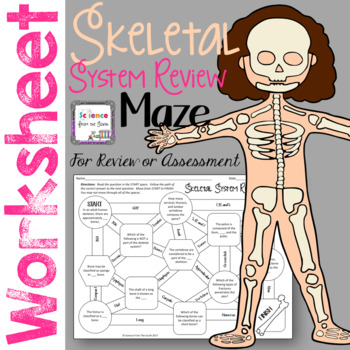 Skeletal System Maze for Review or Assessment