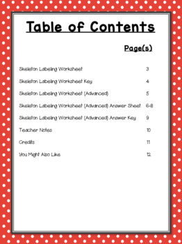 Skeleton Labeling Worksheet for Review or Assessment