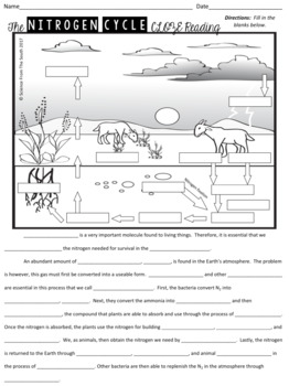 The Nitrogen Cycle Cloze Reading With Diagram For Notes