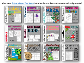 Ecological Organization Cut and Paste for Interactive Notebooks and More
