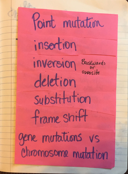 FREE outside of the types of mutation foldable