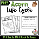 Acorn Life Cycle Booklet