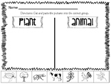 FREEBIE Animals/Plants & Living/Nonliving Sort