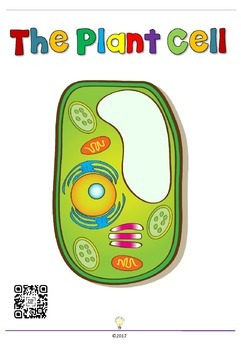 FREEBIE Biology: Animal Cells and Plant Cells Posters with QR Code