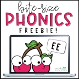 Bite-Size Phonics Lessons - EE - FREEBIE!
