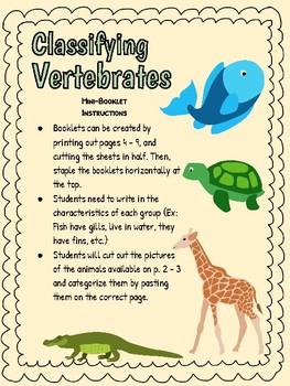 FREEBIE! Classifying Vertebrates - Mini Booklet!