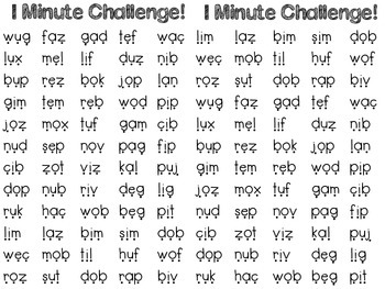 FREEBIE DIBELS 1 Minute Challenge!