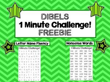 FREEBIE DIBELS 1 Minute Challenge!
