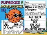 FLIP BOOK Bundle : Pufferfish - Sea Ocean Animals : Research, Report, Writing