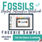 FREEBIE Fossil Discovery Digital Interactive Notebook Sample