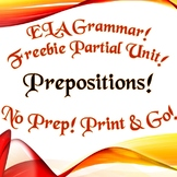 FREEBIE Grammar: Prepositions - Handout