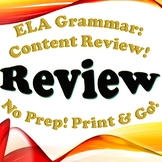 FREEBIE Grammar: Review