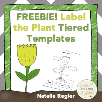 Label the Plant Tiered Templates FREEBIE!