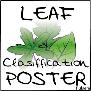 FREEBIE Leaf classification poster