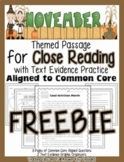 FREEBIE: November Close Reading Passage w/ Aligned Text Dependent Questions