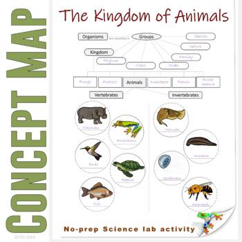 PDF Animal Classification Concept Map Invetebrates and Verebrates