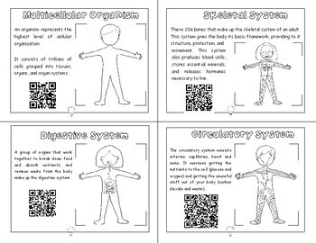 PDF Flash Cards Science Human Body Systems