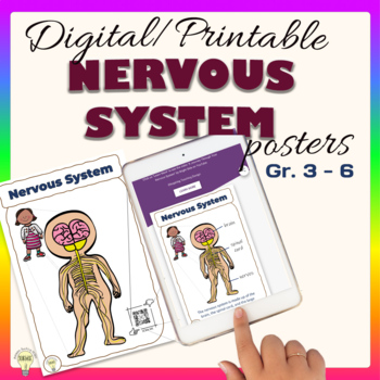 FREEBIE Interactive Nervous System Posters